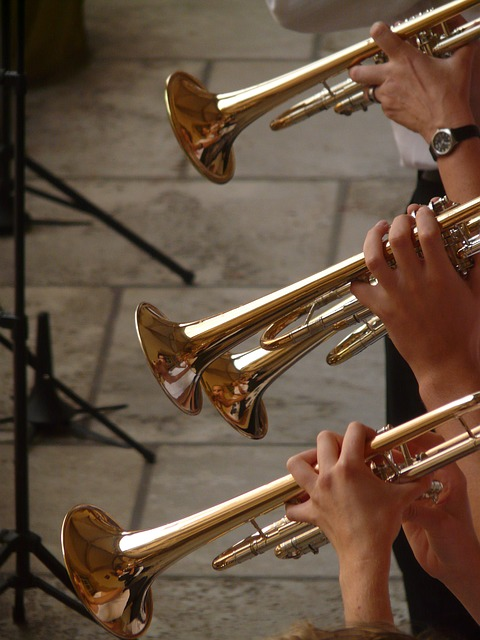 what-brass-player-want-trumpets