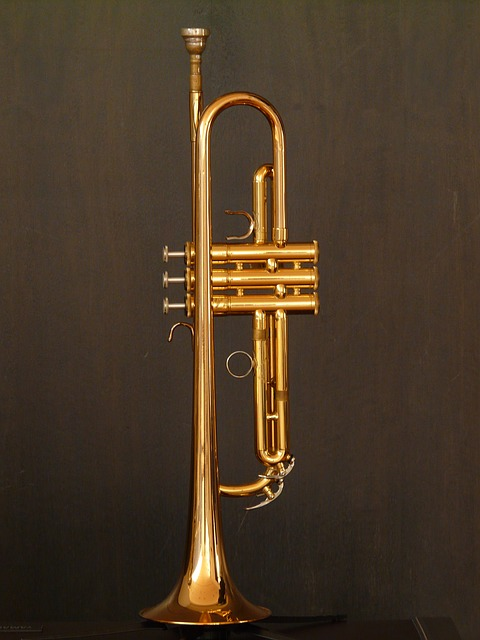 the-right-brass-instrument-what-brass-players-want